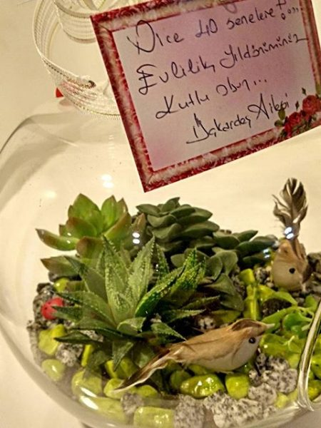 succulent-elma-terrarium-orta-2-kuslar