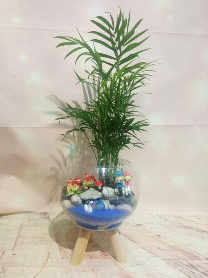 Küre cam içinde teraryum Isparta çiçekçi